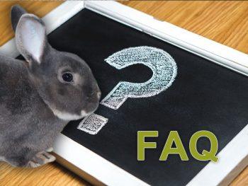 Permalink auf:FAQ- Häufig gestellte Fragen
