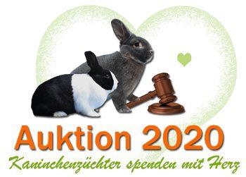Permalink auf:Auktion 2020